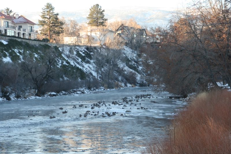 An icy morning. Truckee River, Riverside Drive, Reno.