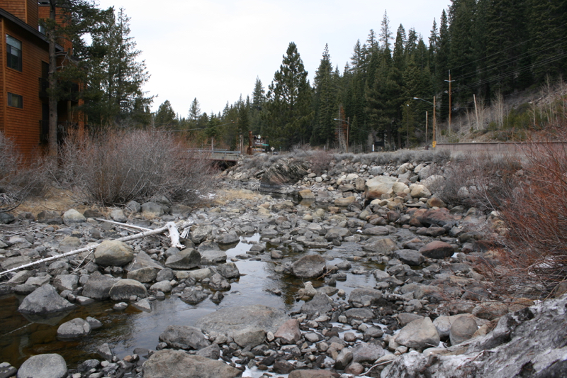 At River Ranch, looking downstream: A very dry channel, Jan 9 2015.