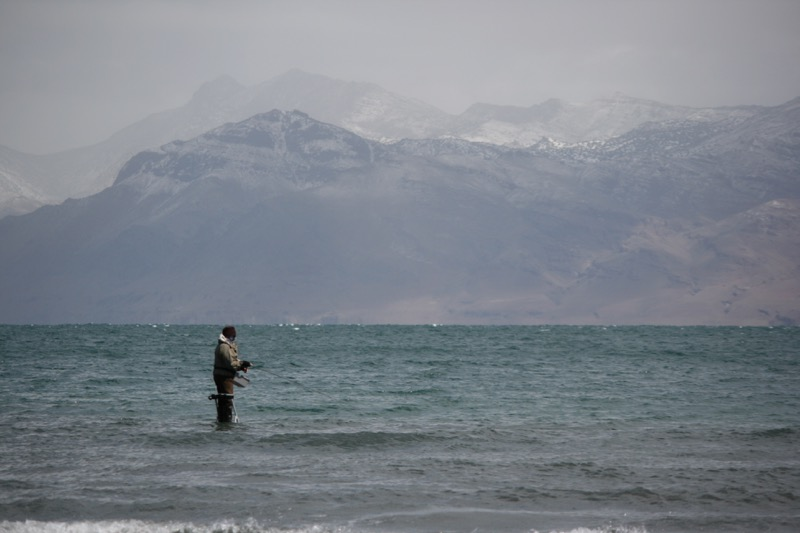 A fisherman at Pyramid Lake, April 13, 2015.