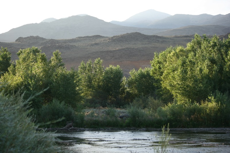 The Truckee River channel at Mustang Ranch Preserve, 6 Aug 2015.