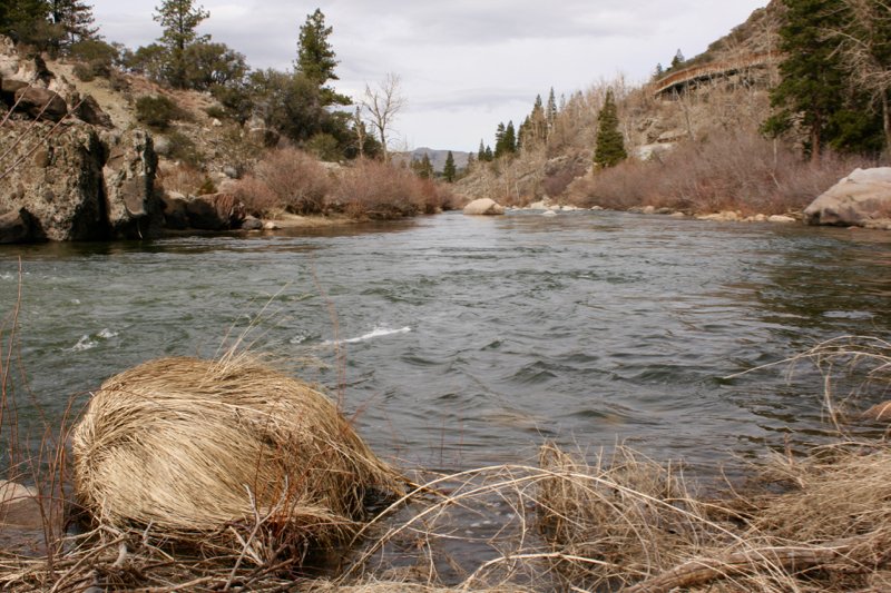 The Truckee River near Fleish power plant, Feb. 28, 2016.
