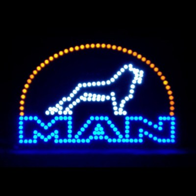 Man Truck LED Logo Light