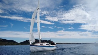 Sage 17 AIR BORN sailing on a sunny day.