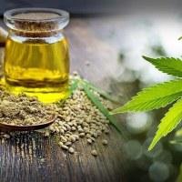 Trouver la meilleure huile CBD en ligne