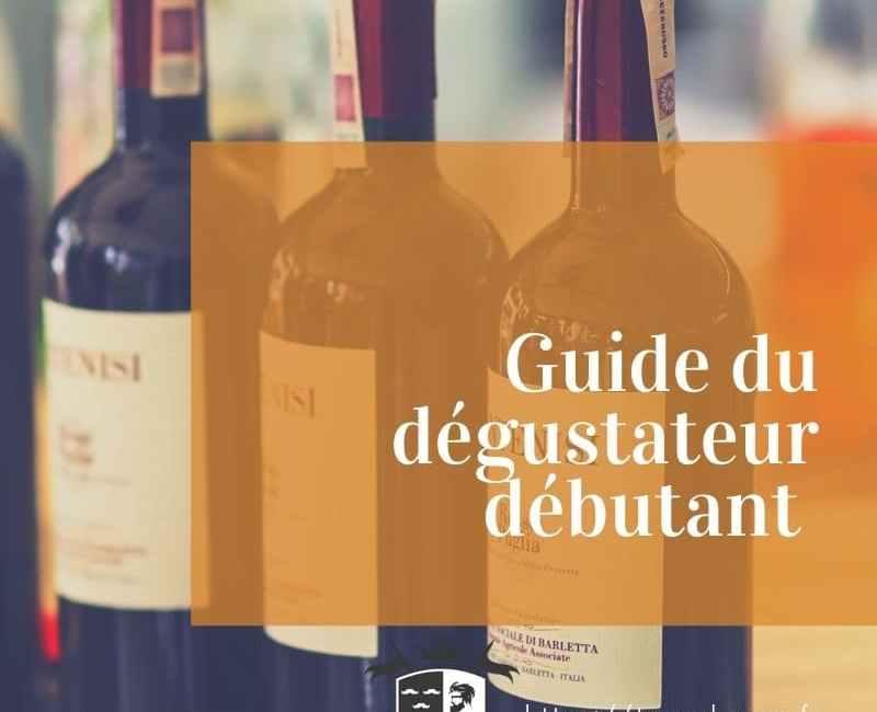 Dégustation de vin pour débutant comment s'y prendre