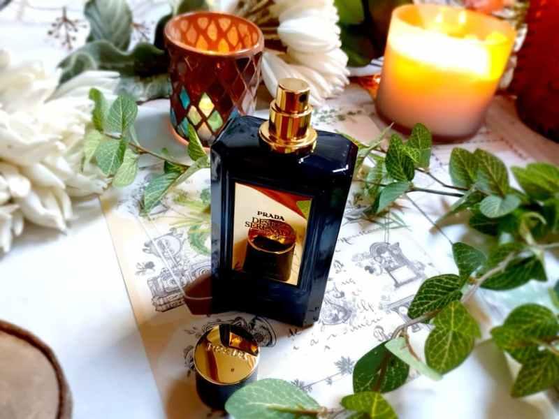 Desert Serenade Prada, une fragrance chaude et suave