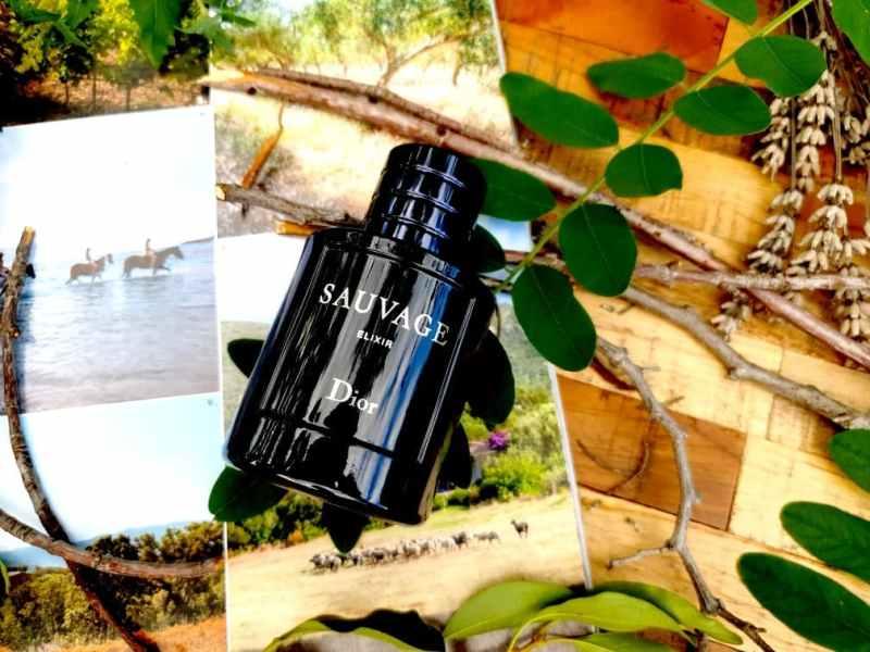 avis sur Sauvage Elixir Dior