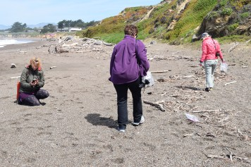 Searching for found objects at Moonstone Beach