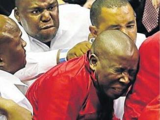 GRAB THEM BY THE BALLS! Apartheid era torture tactic back in spotlight after South African politician manhandled in parliament
