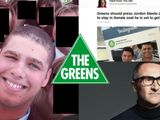 "EXCLUSIVE: Greens likened to Catholic Church as star incoming senator Jordon Steele-John accused of ""persistent"" sexual harassment"