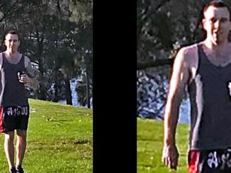 BAY FLASHER ALERT! Pervert on the loose in Sydney targeting women going for a jog