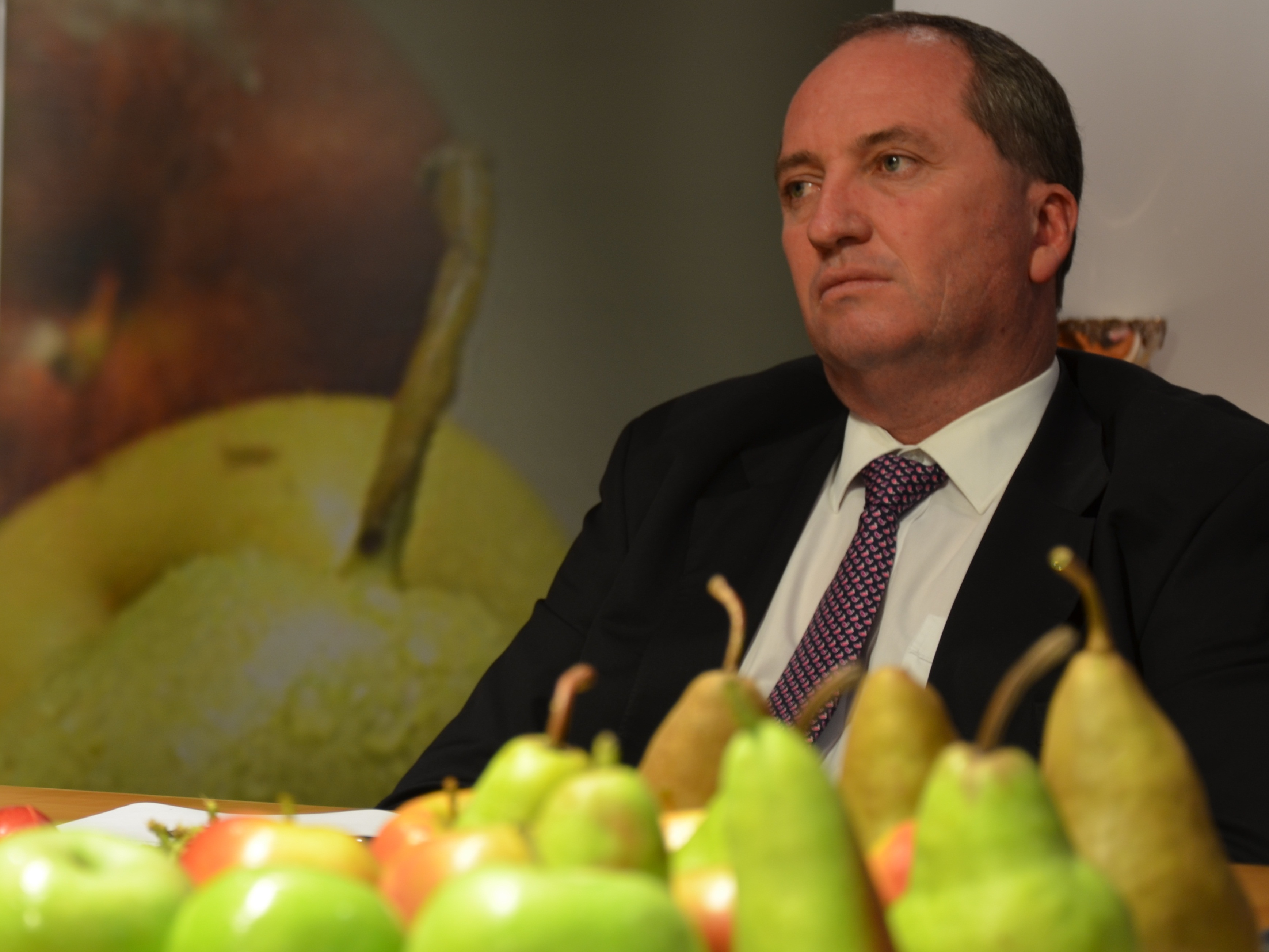 Barnaby_Joyce_March_2014.jpg