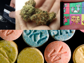 TRUE OPINION: Drug laws – The Great Big Shining Absurdity of it All