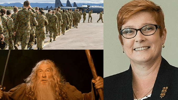 THOU SHALT NOT PASS! Defence Minister Marise Payne becomes authoritarian pain in the arse over military visits