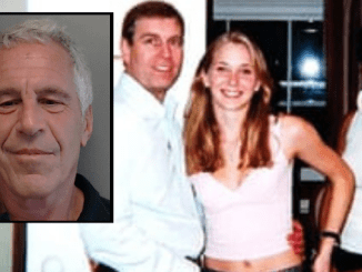 CONSPIRACY OR COVER UP? Prince Andrew and his decades-long friendship with paedophile pimp mate Jeffrey Epstein