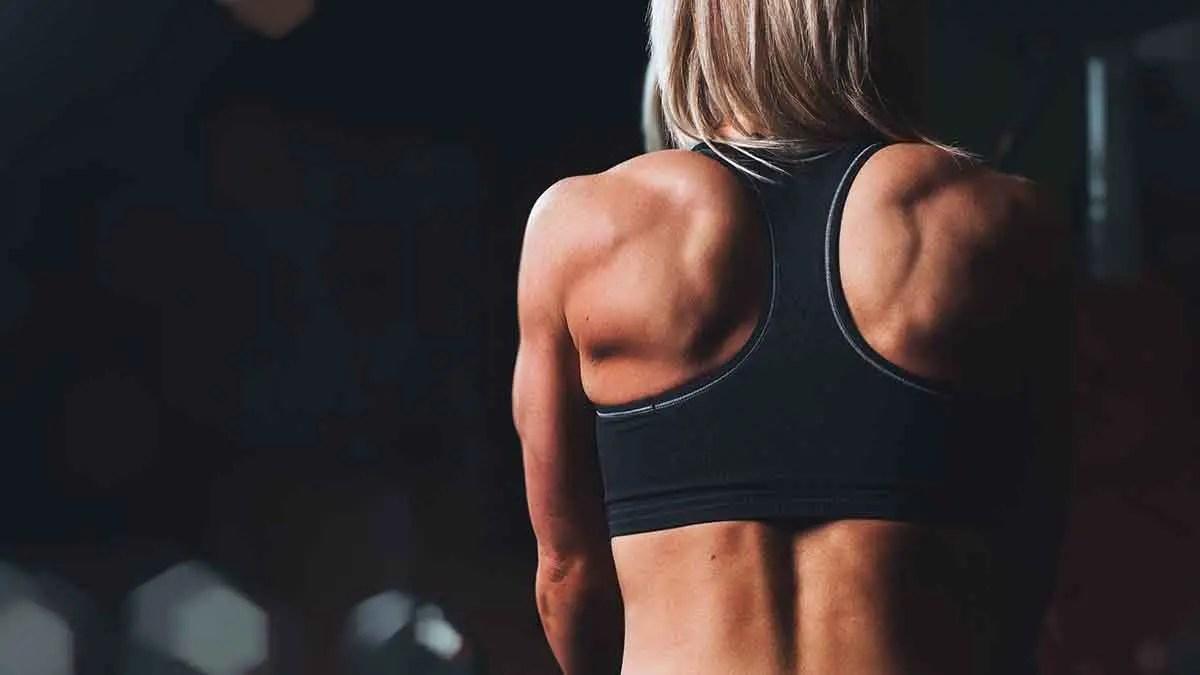 πρωτεΐνη κάνναβης και μυική υπερτροφία