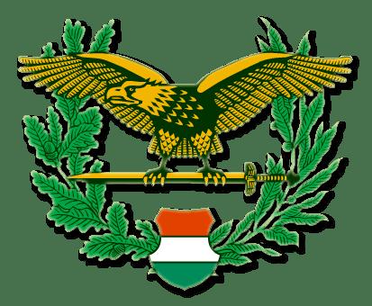 Hungarian symbols
