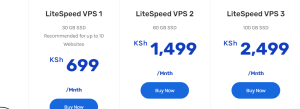 cost to host a website on a VPS in Kenya