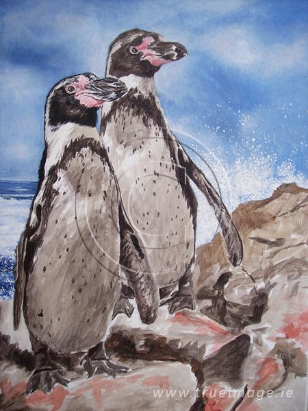 Humboldt penguins painting in progress - step 2