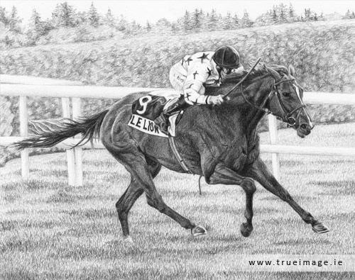 horse and jockey portrait in pencil