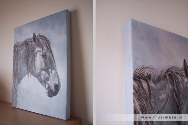 white horse portrait painting in acrylic on canvas