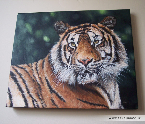 sumatran tiger painting on canvas