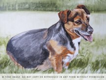 dog portrait painting - work in progress 3
