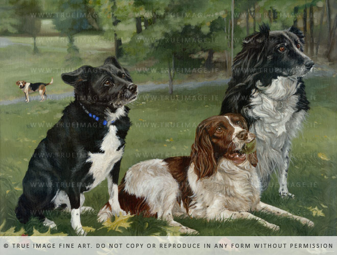 three dogs portrait painting