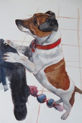 jack russell portrait painting - colour blocking work in progress