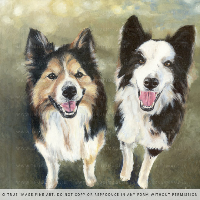 two-collies-painting