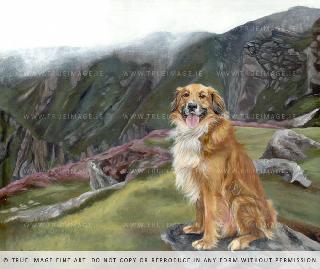 collie-painting-mountains