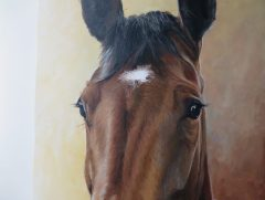 horse painting detailed photo