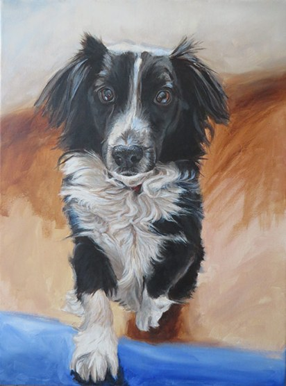 collie painting step 4