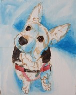 terrier painting progress2
