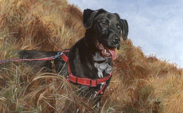 dog painting detail