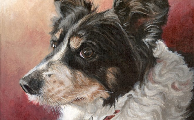 collie acrylic painting detail