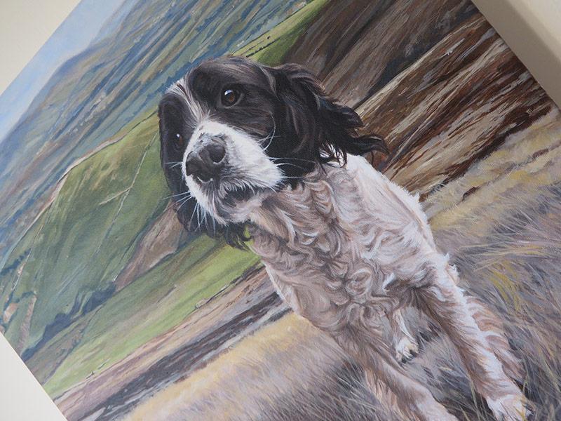 dog portrait close up