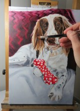 dog portrait colour blocking