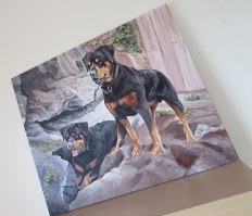 rottweilers painting