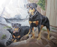 rottie painting detailing 2