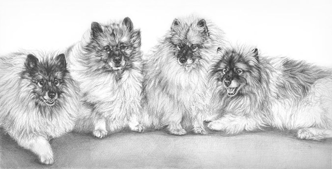 four dogs drawing
