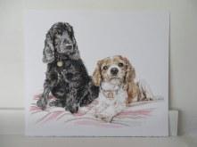 dog portrait on paper