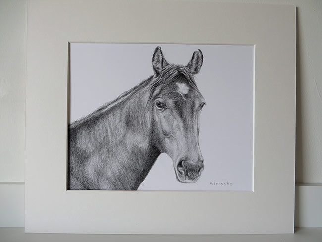 mounted drawing