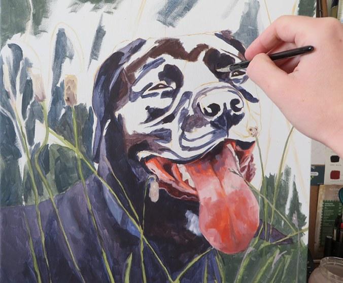 painting progress of a black labrador