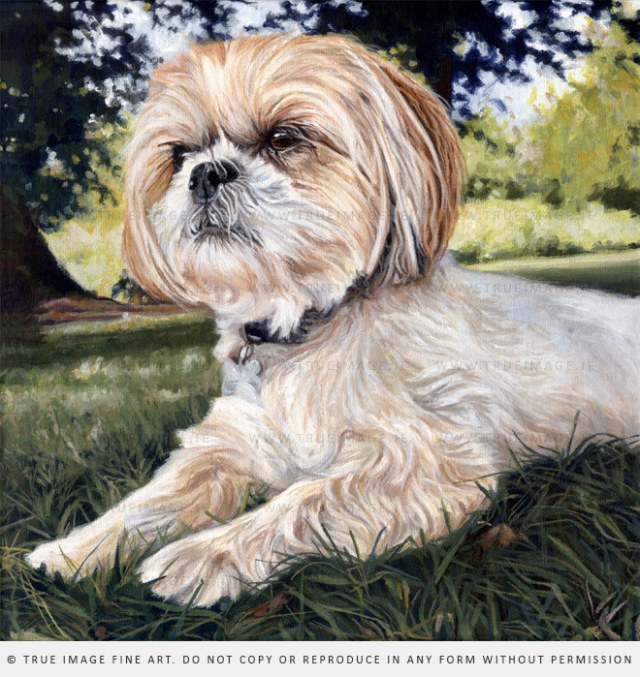 small dog painting