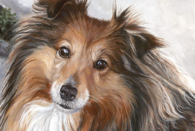acrylic dog portrait detail