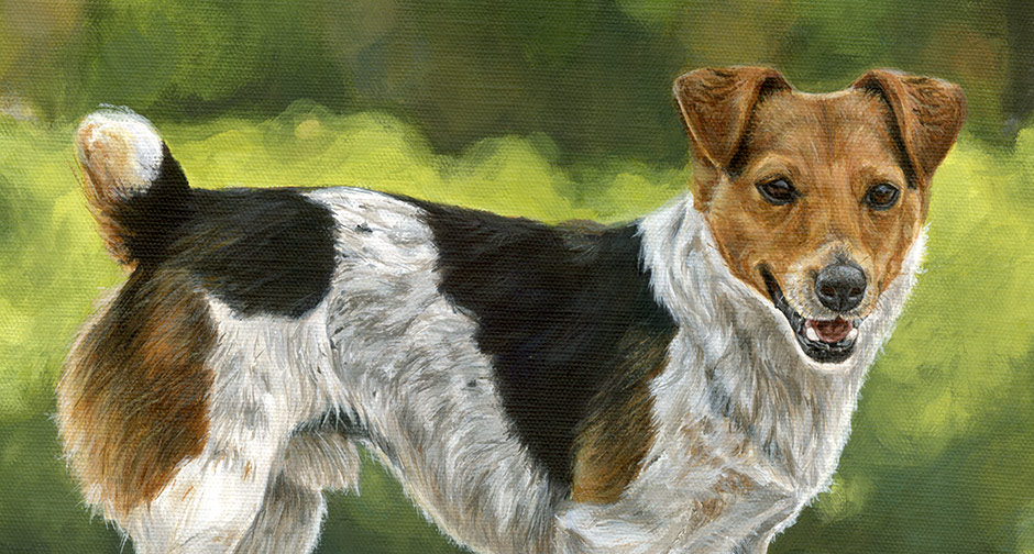 close up view of a jack russell painting