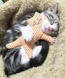 Aww! she is dreaming