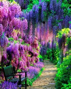 Wow! Incredible color of nature! <3