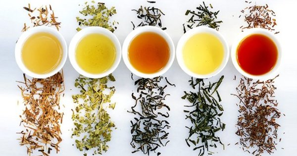 Five Different Colour Types Of Tea And How They Affect Your Health